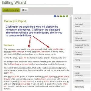 Homonym Report